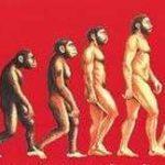 Homo Sapiens?