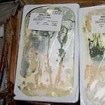 riciclaggio formaggi scaduti