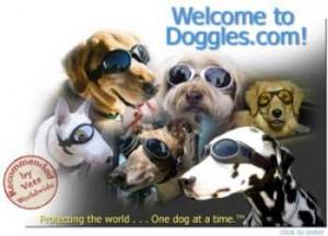Occhiali per cani