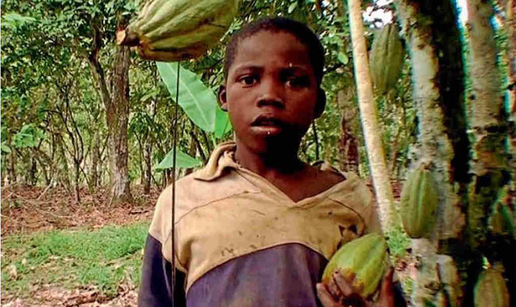 Bambino schiavo del cacao