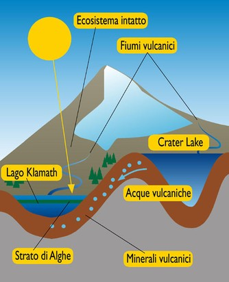 Klamath ecosistema