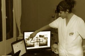 neural odontologia